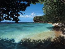 Easy Reef Beach by Stephen Jackson
