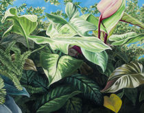 Patio Tropicals #3 by Stephen Jackson