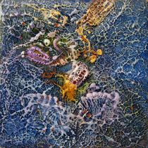 cubozoa by Elisabeth Vedrine