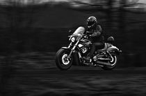 Dark Rider by holka