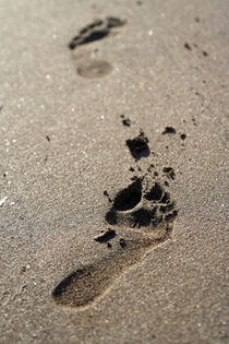 Footsteps in sand by Miroslava Andric