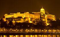 Buda Castle von Evren Kalinbacak