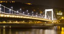 Elisabeth Bridge von Evren Kalinbacak