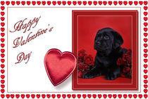 Labrador Valentine card 2 by Waldek Dabrowski