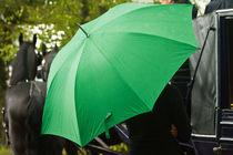 Green Umbrella by Sheona Hamilton-Grant