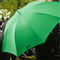Green-umbrella