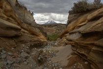 Flash flood canyon von Johan Elzenga