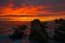Sunset at the pacific by Johan Elzenga