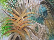UNDER THE PALM   by ROBERT ROHRICH