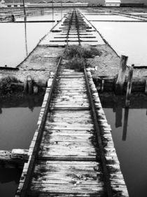 Arrow by Miroslava Andric