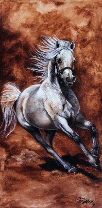 Arabisches Vollblut III von art-imago