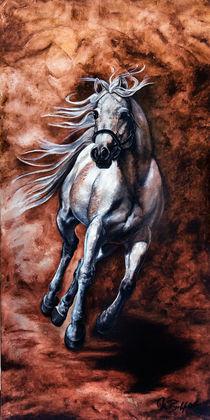 Arabisches Vollblut von art-imago