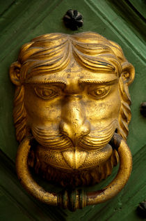 Door knocker by holka