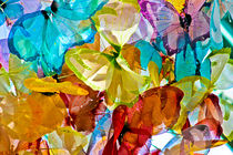 Flutttering Colors by Nabila Khanam