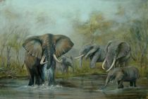 At the Waterhole von rita palm