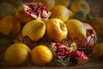 Zitronen und Granatäpfel von Ursula Pechloff