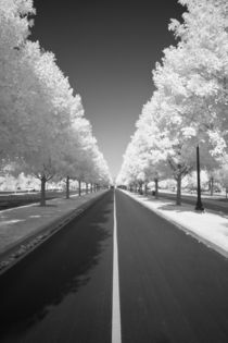 Michael-kloth-center-line-road-mg-1254