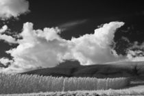 Michael-kloth-ir-landscape-field-and-clouds-2852