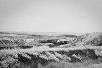 Train and Landscape in Eastern Washington von Michael Kloth