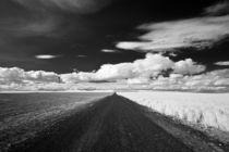Eastern Washington Farm Lane by Michael Kloth