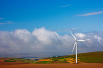Michael-kloth-mid-columbia-wind-farm-3930