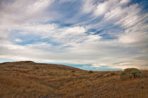 Rattlesnake Mountain Wildlife Area von Michael Kloth