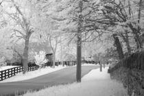 Michael-kloth-rural-kentucky-road-2342