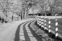 White Plank Fence and Shadows at the Red Mile by Michael Kloth
