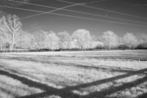Wires and Shadows by Michael Kloth
