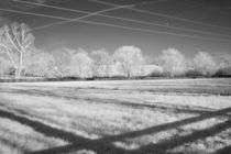 Wires and Shadows von Michael Kloth