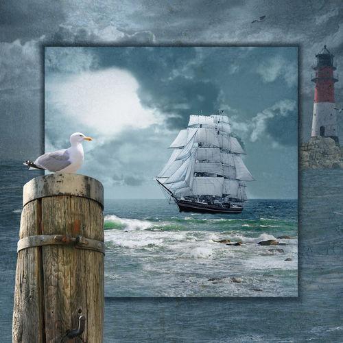 Collage-segelschiffe-ohne