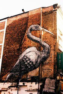 BIRD von Giorgio Giussani