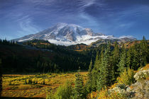 Mount Rainier and Paradise Valley von northwest-scenescapes
