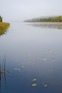 Early morning mist over lake in autumn by kbhsphoto