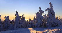 Winterpanorama am Brocken 07 by Karina Baumgart