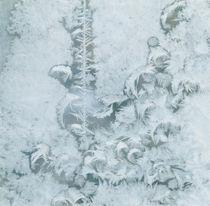 ice feathers von Franziska Rullert