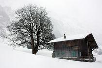 Melancholie des Winters von Bettina Schnittert