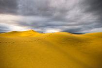 Dunes of Maspalomas by Wicek Listwan