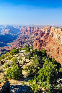 Grand Canyon by Wicek Listwan