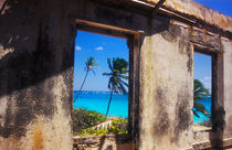 Old Plantation House, Barbados by Melissa Salter