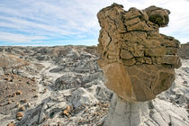 Bisti Wilderness 32 by Luc Novovitch