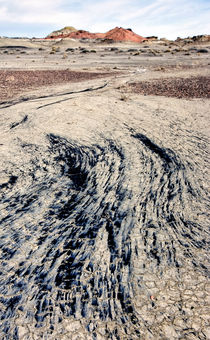 Bisti Wilderness 35 by Luc Novovitch
