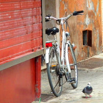 Bicycle, shop and pidgeon by artskratches