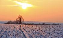 Sonnenuntergang in Winterlandschaft von Wolfgang Dufner