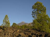 Pico del Teide von Petra Koob