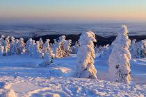 Winterlandschaft am Brocken im Harz 13 von Karina Baumgart