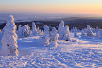Winterlandschaft am Brocken im Harz 14 by Karina Baumgart