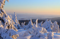 Winterlandschaft am Brocken im Harz 19 by Karina Baumgart