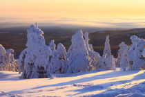Winterlandschaft am Brocken im Harz 20 by Karina Baumgart