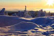 Winterlandschaft am Brocken im Harz 22 by Karina Baumgart